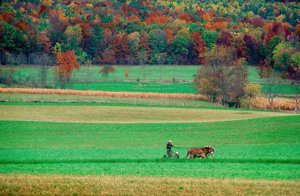 Fall in the Susquehanna River Valley (2009)